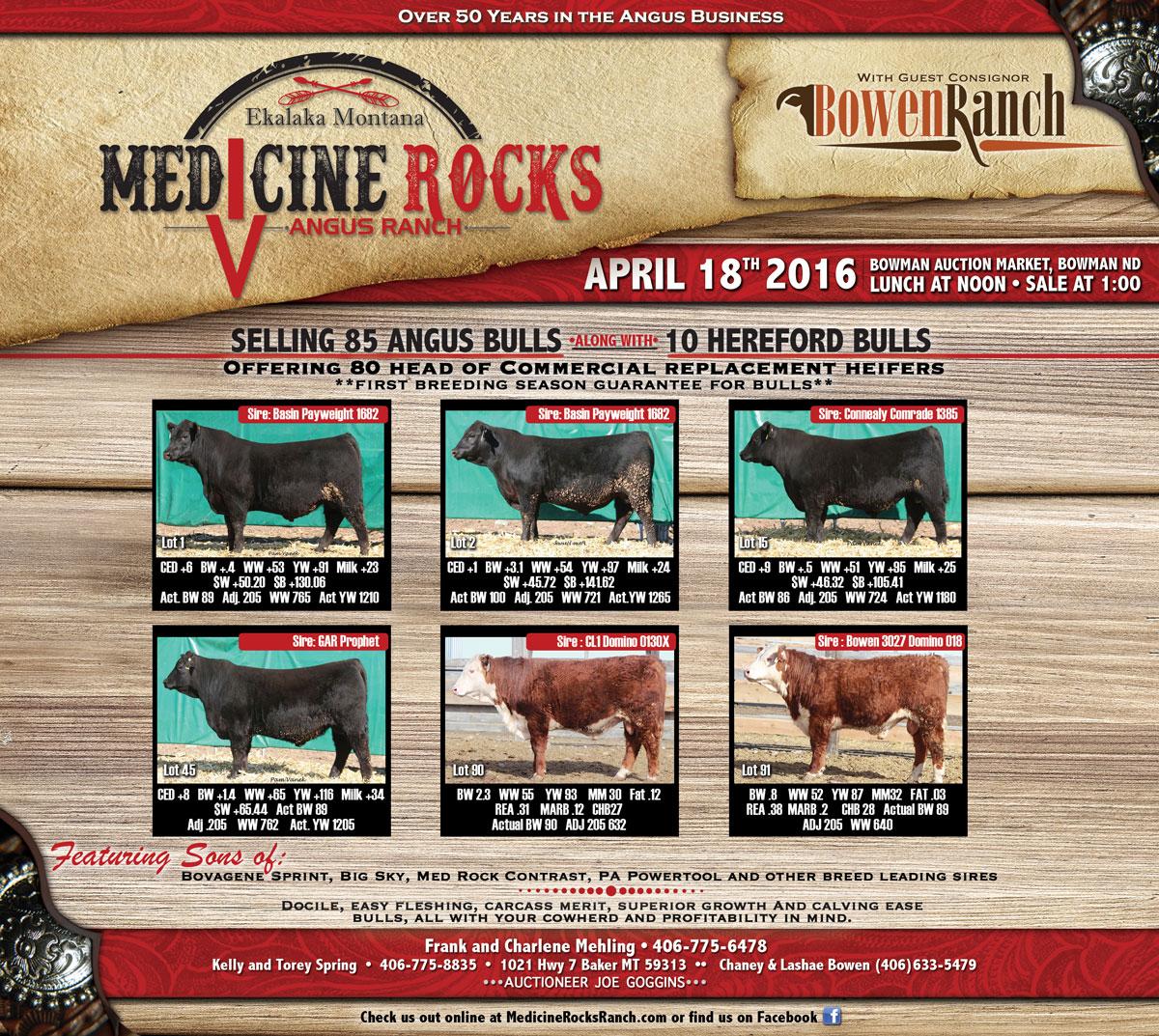 Medicine Rocks Ad