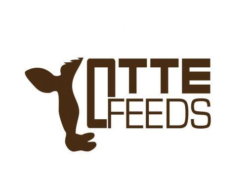 Otte Feeds